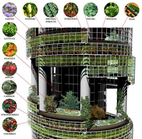 urban-farm-plants-vegetables