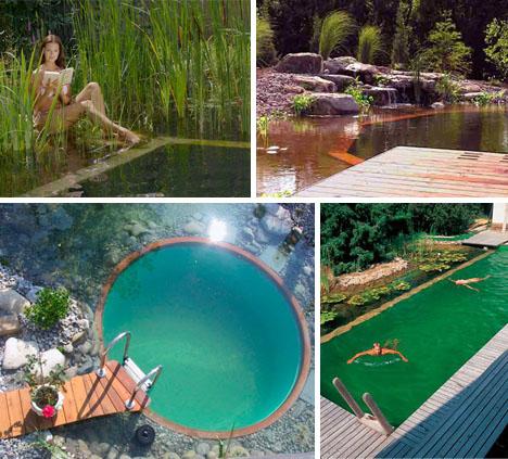 green pool deck design