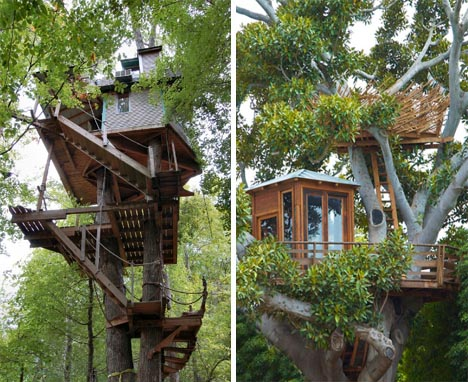 tree house modern building