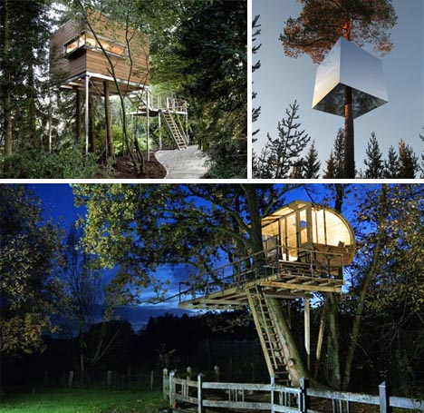 tree house modern homes