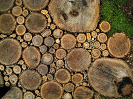wood natural path patio design