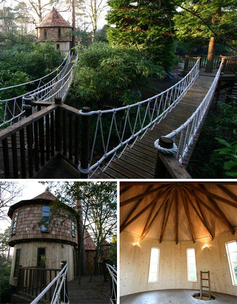 tree house walkways