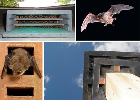 me______________: Hanging Bat House: Upside-Down Wood