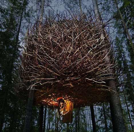 The Bird's Nest: Fantastic Treehouse Room in a Forest Hotel