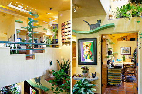 Remodeled House Has Insanely Fun Cat Centric Interior Fine Home