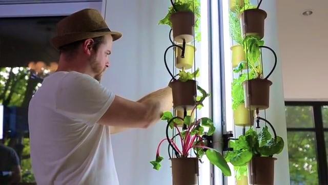 Nutritower Vertical Farm