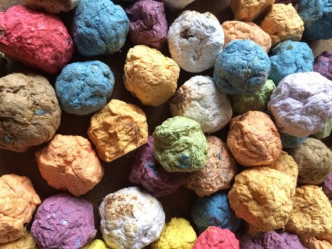 5 Wildflower Seed Bombs for Creative Gardening
