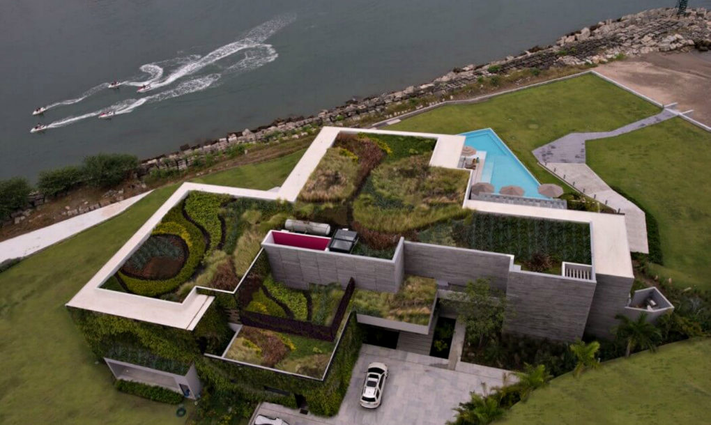 green home rooftop landscaping